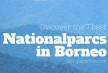 Borneo ~ Reisetipps / Tips for traveling to Borneo. Find the best nationalparks in Borneo, which city to stay and what hikes to do in the rainforest and much more...