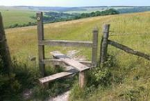 Sussex Countryside / There's so many wonderful and stunning views around the county of Sussex, so we've set this board up to showcase the best of them. Both countryside and coastal with some quirky close-ups thrown in!