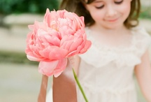 Flower Girls and Pageboys