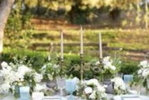Floral & Centerpieces / by Lake Oak Meadows