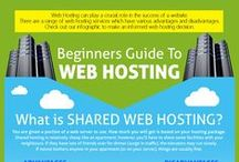 Web Hosting Guidelines / iBeFound's input on selecting appropriate web space and choosing a well-qualified web host for your business website.