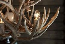 Hunting lodge & wild / decoration inspiration