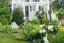 Piha, puutarha ja terassi
