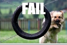 LOL Fails / For all those LOL fail moments. / by I'm LOL