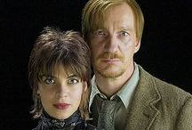 Remus Lupin and Nymphadora Tonks