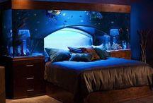 Dream Home : - )