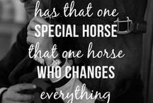 Great Horse Quotes and Sayings / Those horse quotes and sayings that touch the heart and hit the nail on the head.