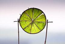Inspire / Plein Air, land art, sculpture, design, photography, everything that inspire artist life