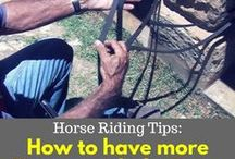 Horse Riding Tips / A collection of the best Horse Riding Tips to make you a better rider, and to help you get more out of your horse, in a more gentle manner.
