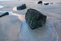 Natural World / We love natural forms - from rock and precious stone formation to magnified cell structures