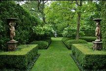Tuininspiratie Formeel / De formele tuin draait om lijnenspel, indeling in vlakken en het gebruik van patronen. De indeling is overzichtelijk, groen is de belangrijkste kleur en decoraties zijn klassiek.