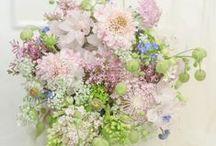 定期レッスン monthly lesson / 花のレッスン 一会定期スクールのご案内 月に一度の定期フラワースクールで、生徒さんが作ったブーケや装花の写真、レッスン中の風景です ウェディングコースとアレンジコースがあります  ;30枚くらいを目安に