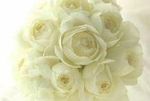 バラ / バラメインのブーケや装花