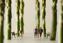 Art | Miniature Photography | Tiny World / miniature photography - incredibly enchanting and surreal worlds made of little people - It's a small world afterall! Creative macro lens photography  / by Betty Chin-Wu