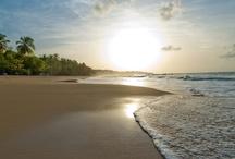 Dominican Beaches / 600 Kilometer Traumstrände, 255 Sonnentage im Jahr und immer zwischen 22 und 32 Grad Celsius – damit punktet die Dominikanische Republik bei den Deutschen. / 600 kilometers of spectacular beaches, 255 days of sun each year and a temperature between 22 and 32 degree celsius – no surprise, Dominican Republic is famous for its beaches.