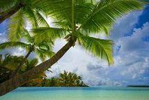 Travel Box - Caribbean / by Titti Guzzo