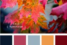 colors palette / by Patty Caza