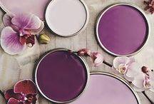 Obsession lavande / Couleur lavande violette mauve