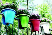 Landscaping: Decorative Elements & More