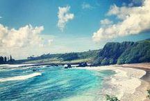 + Maui trip! / Inspiration/ideas for Maui August holiday