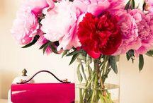 + In Bloom