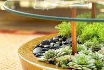 Decor & Design (Garden) / Items and ideas for a better garden/deck.
