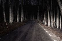 、Stranded in the woods / Nighttime | Lost | danger lurking in the shadows | Do you trust the one behind that flashlight?