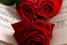House of Red Roses