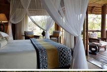 Boutique Bridal Luxury Safari Honeymoon / Luxury Safari Honeymoons in Africa.