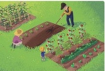 Gardening / by Andrea Spencer