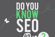 Infographics SEO / Infographics related to SEO and writing for websites, blogs and others
