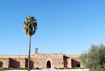 :: Marrakesh ::