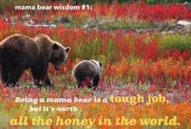Mama Bears / Celebrating the wise, protective, and nurturing spirit of a mama's love.