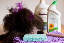 Clean, Clean, CLEAN!! / by Amber Buchmann