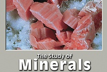 The Study of Minerals CD-ROM by Tasa Graphic Arts, Inc. / The Study of Minerals is a comprehensive learning tool for anyone interested in minerals, from a casual collector to the advanced mineralogy student. Written by M. Darby Dyar, Ph.D., Richard M. Busch, Ph.D., and C. Gil Wiswall, Ph.D. Illustrated by Dennis Tasa. Multimedia Earth science geology CD-ROM for Macintosh and Windows.