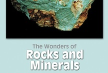 The Wonders of Rocks and Minerals CD-ROM by Tasa Graphic Arts, Inc. / The Wonders of Rocks and Minerals explores the world of geology in an exciting and highly interactive way. Written by Edward J. Tarbuck and Frederick K. Lutgens, and Edward Greaney. Illustrated by Dennis Tasa. Multimedia Earth science geology CD-ROM for Macintosh and Windows.