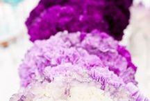 b o u q u e t s / Beautiful bouquets