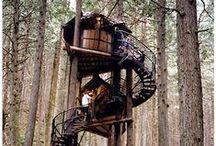{Tree Houses}  / Life goal.