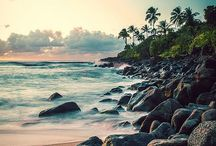 Hawaii / Traveling to Hawaii? All you need to know about your next Hawaii adventure! | The Tattooed Travelers | Travel | Travel Inspiration | Travel Tips | Bucket List | Things To Do | Travel Guide | Inspiration | Itineraries | Adventures |