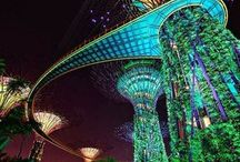 Singapore / Traveling to Singapore? All you need to know about your next Singapore adventure! | The Tattooed Travelers | Travel | Travel Inspiration | Travel Tips | Bucket List | Things To Do | Travel Guide | Inspiration | Itineraries | Adventures |