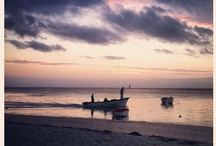 Mauritius by others / MAURITIUS BY OTHERS IS YOURS. It is a collaborative Pinboard. You like Muaritius and would like to share your Mauritius experience? Follow us on Pinterest, post a comment on this board and become a contributor.