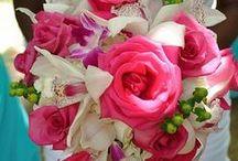 TODO FLORES Y PLANTAS / Decorar con plantas y flores, tanto interiores como exteriores. Y ramos para novias y eventos.