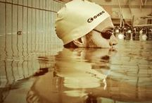 Out Water Training   / La preparazione fisica per il nuoto!
