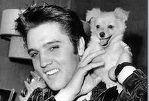Dogs And Their Famous Humans / A collection of amazing photos of famous people with their dogs.