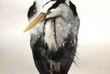 Painting (China & Japan), Birds