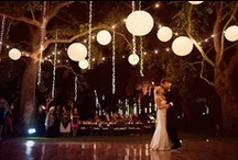 May Wedding / Forest and fairylights, blossoms and candles... A wedding on a shoestring