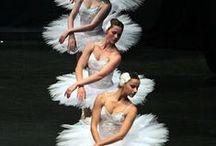 DANÇA / Ballet