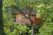 ❤️CABANES DANS LES ARBRES❤️    ❤️CABINS IN THE TREES❤️ / J'ai mon petit coin de Paradis, une magnifique forêt de beaux arbres il n'y a plus qu'a réaliser ce doux rêve !!!