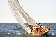 Sail away / by Fannie