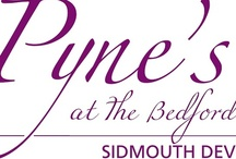 Pyne's at The Bedford / A place for eating, drinking and meeting